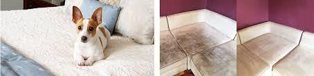stoff sofa reinigen stoff reinigen schon sofa reinigen lassen 7306 haus