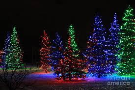 tree lights happy holidays