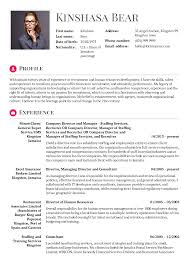 Management Consultant Resume Download Business Consultant Resume Sample Haadyaooverbayresort