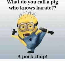 what do you call a pig who knows karate a pork chop meme on me me
