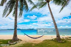 empty hammock between two palm trees on tropical island stock