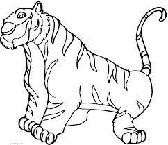 imagenes de animales carnivoros para imprimir dibujos de tigres para colorear