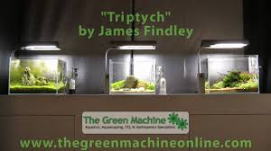 Green Machine Aquascape Triptych U0027 Aquascapes By James Findley The Green Machine Youtube