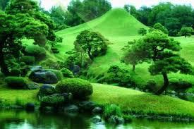 imagenes zen gratis meditación zen archivos documentales online gratis en español sin