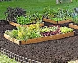 voguish ideas raised vegetable garden kit decoration
