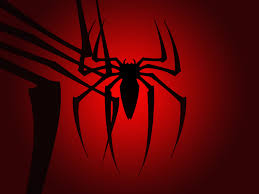 halloween spider background spider wallpaper hd