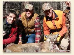 trophy mountain lion hunt in southwest new mexico professional