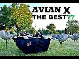 Avian Xa Frame Blind For Sale What Is The Best Duck And Goose Decoy Avian X Decoy Review Youtube