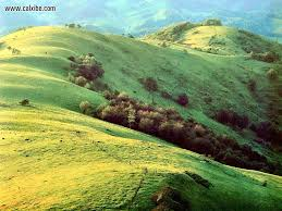 Tennessee landscapes images Nature landscapes smooth shoulder ridge tennessee picture nr 9610 jpg