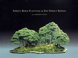 to bonsai tree forests and rock plantings book