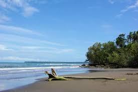 15 best black sand beaches in the world