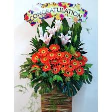 congratulations flowers gerberas with stargazer lilies congratulations sign flower