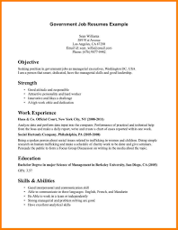 Resume Examples Internship 100 Government Resume Examples Samples Ses Resume Resume Cv