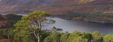 Lady Glen Affric by Pippa Middleton James Matthews Scottish Estate