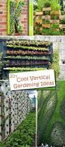20 cool vertical gardening ideas hative