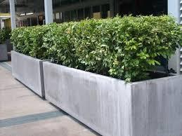 large concrete planter box u2013 eatatjacknjills com