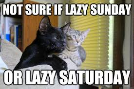 Sunday Meme - lazy sunday meme sure if lazy sunday or lazy saturday not sure