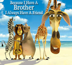 brother pictures images graphics and comments