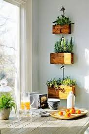 Indoor Wall Herb Garden I Would Love This In Our Home Indoor Garden In The Kitchen