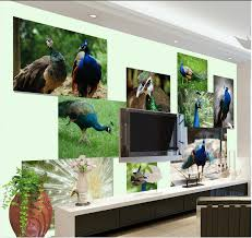 online get cheap country wall murals aliexpress com alibaba group 3d wallpaper custom mural peacock painting wallpaper 3d wall murals wallpaper home decoration china
