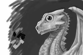 Eragon Map Eragon Saphira Baby Special Offers