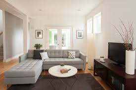 Gray Sofa Living Room Ideas Beige Sofa Living Room Ideas Great Attention To Detail In This