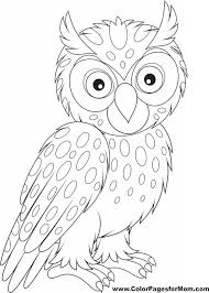 100 ideas owl colouring pages on emergingartspdx com