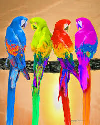 1292 best colorful things images on pinterest colors rainbow