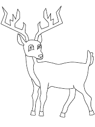 deer coloring pages deer coloring book lowrider car pictures
