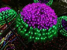 christmas lights spectacular pokolbin event