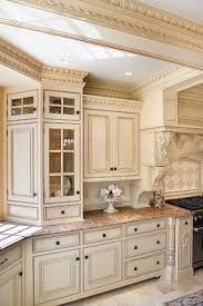 Kitchen Cabinets Finishes Gloss N In Design Ideas - Kitchen cabinet finishing