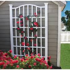 decorating arbor with trellises for outdoor decoration ideas