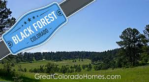 black forest home for sale local colorado real estate