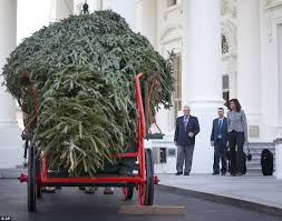 michelle obama welcomes white house christmas tree daily mail online