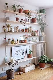 Living Room Wall Shelving by 7 Different Way To Indoor Plants Decoration Ideas In Living Room