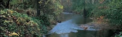 California rivers images Friends of the river the voice of california 39 s rivers since 1973 jpg