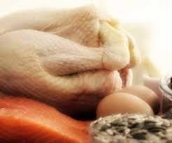 alimentazione ricca di proteine alimentazione ricca di proteine seguire una alimentazione proteica