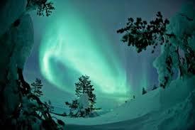 scandinavian cruise northern lights norway northern lights roundtrip cruise with hurtigruten and nordic saga