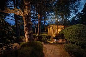 Moonlighting Landscape Lighting Downlighting Vs Uplighting When Do You Need Each In Your Landscape