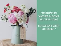 nature quotes to live by quotes to live by back to eden eco shop