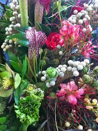 plant talk northwest flower and garden show