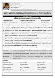 Profile Summary For Oracle Dba Shivank Bansal Resume