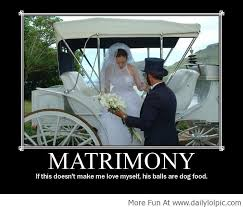 Definition Memes - best funny pictures funny images funny memes definition flickr