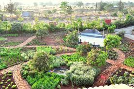 herbal garden herbal garden picture of the ark wellness retreat mulshi