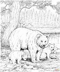 printable bear coloring pages for kids pictures of bears animal