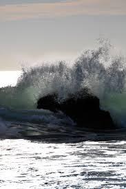 17 best bodega bay images on pinterest bodega bay bays and
