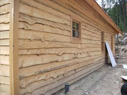 wood plank siding options cariciajewellerycom