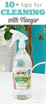 House Cleaning Tips And Ideas 30 Best Go Green Images On Pinterest Cleaning Recipes Cleaning