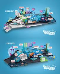 Map Toronto Canada by Ripley U0027s Aquarium Of Canada Located In Toronto Ontario