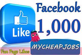 facebook fan page followers i will add 5 000 facebook non drop followers for 65 maisha